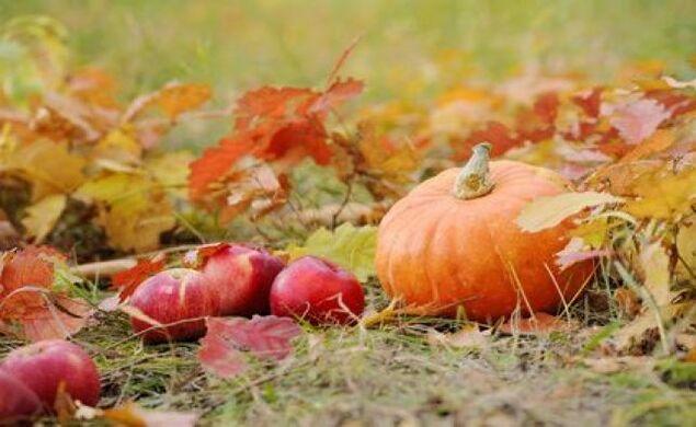 Bienvenue à l'automne!